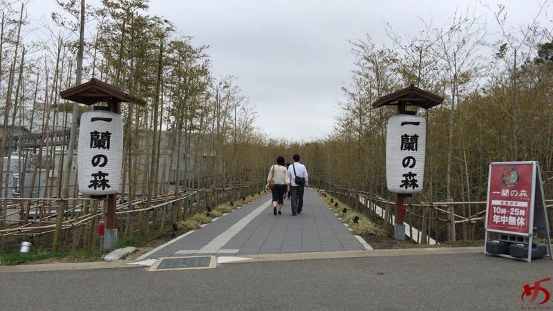 一蘭の森 (9)
