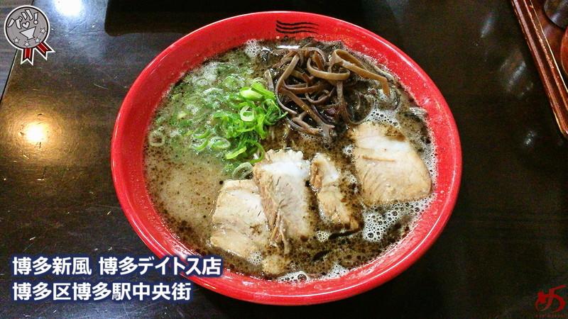 新風デイトス (8)