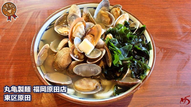丸亀製麺 新宮店 (9)[1]
